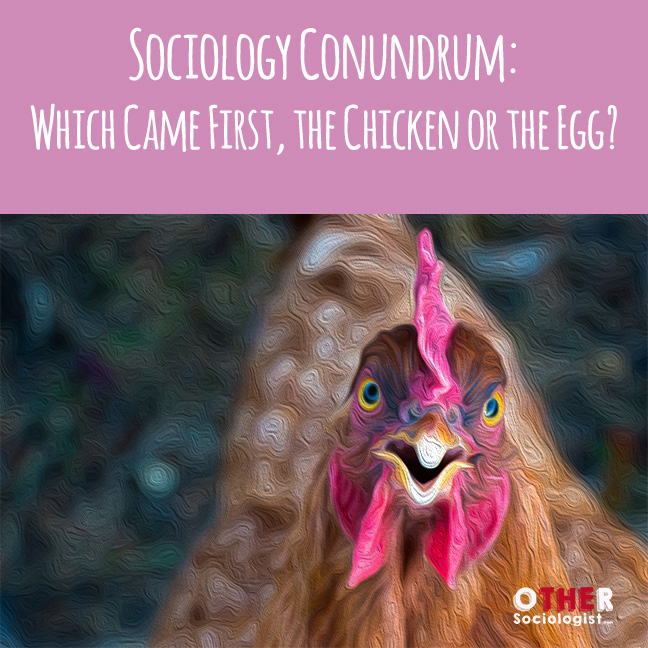 Close up of a chicken's head with its eyes seemingly accusingly with the title Sociology Conundrum -Which Came First the Chicken or the Egg
