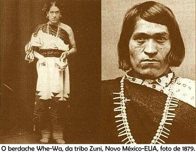 Image result for gender variation in native americans