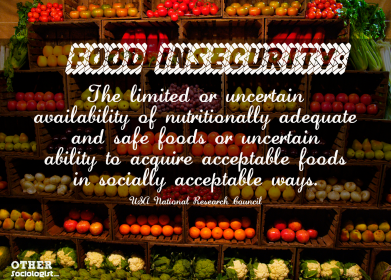 Food Insecurity - The Other Sociologist