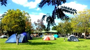 Kiwi Foo tent city. Werewolf free since March 2016