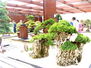 Penjing with Reed Pipe Rocks at the National Bonsai and Penjing Collection