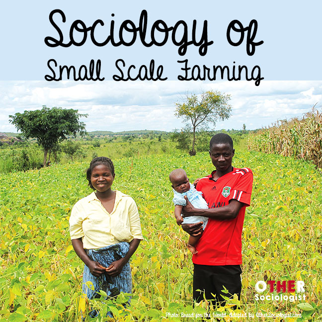 Sociology of small scale farming