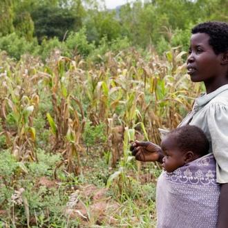 Woman farmer in Mwanza District, Malawi. Photo: Swathi Sridharan, via Flickr