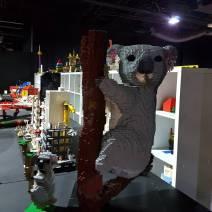 Brickman Experience (6)