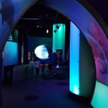Melbourne Museum (3)