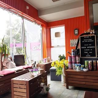 Ozzy Thai Cafe Bar Restaurant (2)