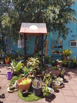 明格拉莱塔花园(6)