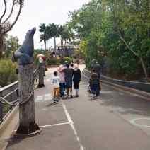Taronga Zoo (7)