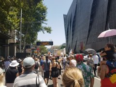 Invasion Day Sydney rally