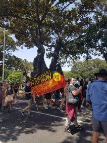 入侵日土著权利