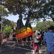 Invasion Day Aboriginal rights now