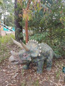 澳大利亚爬行动物公园(10)