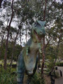 澳大利亚爬行动物公园(13)