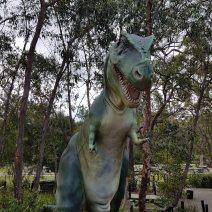 Australian Reptile Park (13)