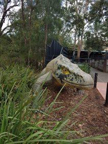 澳大利亚爬行动物公园(14)