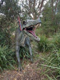 澳大利亚爬行动物公园(15)