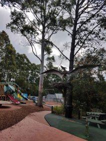 澳大利亚爬行动物公园(19)