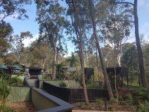 澳大利亚爬行动物公园(6)