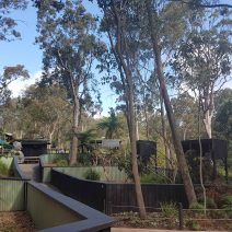 Australian Reptile Park (6)