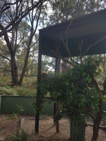 澳大利亚爬行动物公园(7)