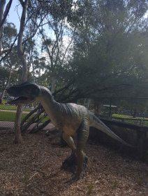 澳大利亚爬行动物公园(8)