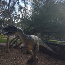 Australian Reptile Park (8)