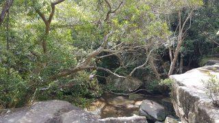 萨默斯比瀑布-中部瀑布