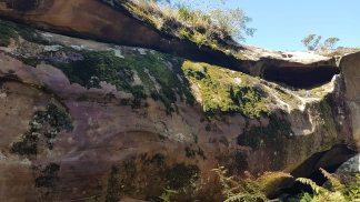 Kincumba Mountain - Kanning Cave - exterior moss