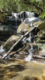 Somersby Falls - lower falls branch