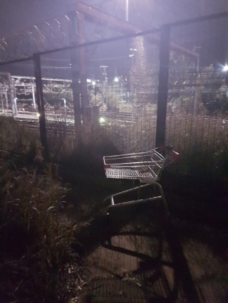 Sociology of Trolleys - before and after (1)