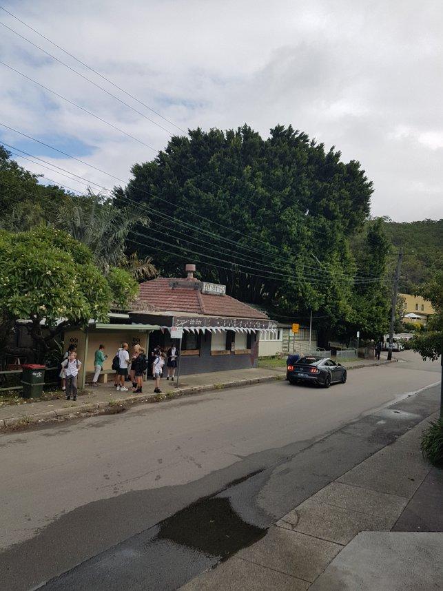 从高处拍摄,一条被大树环绕的美丽街道。人们聚集在中心地带