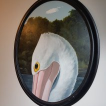 Oval painting of a pelican's eye and neck hung on a white wall