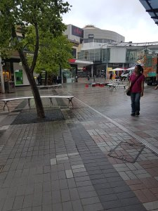 An Asian woman is walking near a tree at the outdoors Hornsby mall, with colourful vans and shops behind her