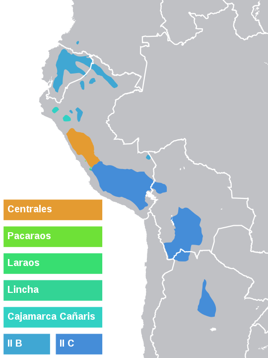 The map shows the majority of Quechuan speakers live along the western coast of Peru. Other live in the central and eastern parts of Ecuador, the south-west of Bolivia, and central Argentina